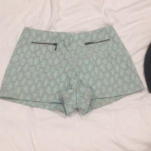 Zara Light Blue High Waisted Shorts